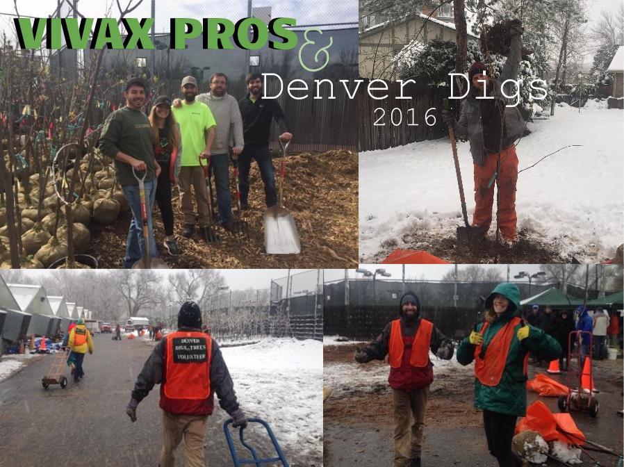 Vivax Pros volunteering at Denver Digs 2016